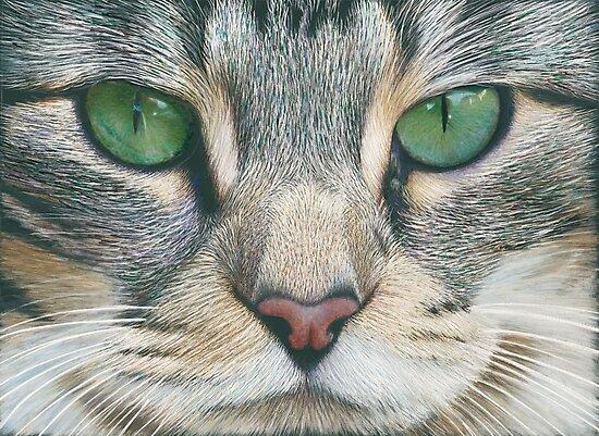 Emerald Eyes Scratch Art by Karen  Hull