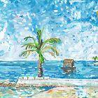 South Malé Sandbarge by John Douglas