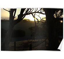 Countryside sunset - Kangaroo Island Poster