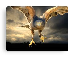Death Comes on Silent Wings Canvas Print