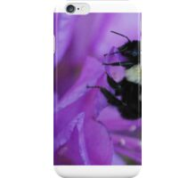 Bumble Bee on Rhododendron iPhone Case/Skin