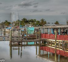 Olde Fish House Marina & Restaurant  by John  Kapusta