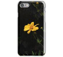 Yellow Wildflowers at Lake Cuicocha iPhone Case/Skin