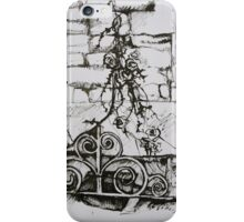 French Chapeau Grate iPhone Case/Skin