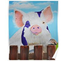 Furry Pig Poster