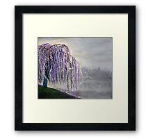 Magic Willow Framed Print