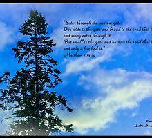 Bible Verse Matthew 7:13-14 by DianaBozart