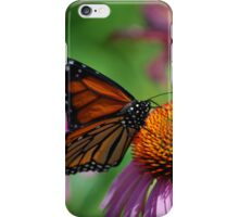 Monarch on Coneflowers iPhone Case/Skin