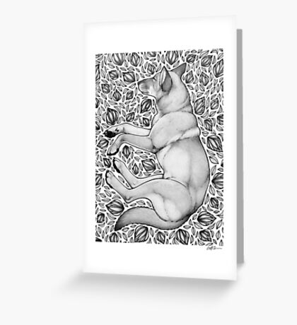 Dingo Dreaming Greeting Card