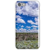 Big Sky and Sage Brush iPhone Case/Skin