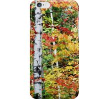 Autumn's Glory iPhone Case/Skin