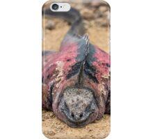 Marine iguana iPhone Case/Skin