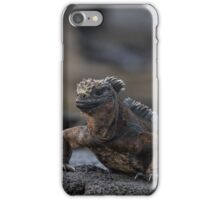 Marine iguana iPhone Case/Skin