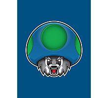Minnesota Timberwolves 1Up Photographic Print