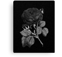 Black&White Abstract Rose  Canvas Print