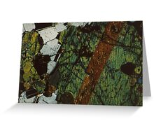 Pyroxene and Feldspar  Greeting Card