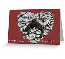 Kissing Red Pandas Greeting Card