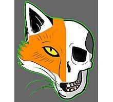Fox Scull Photographic Print