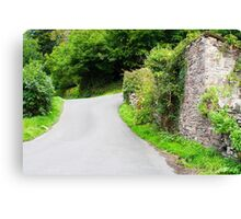 English Country Lane in Devon Canvas Print