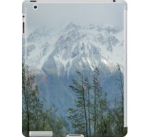Fraser View  iPad Case/Skin