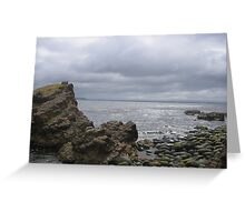 View from Murrayfield, Bruny Island Greeting Card