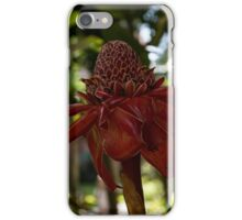 Glossy Jewel in the Jungle - Red Torch Ginger Lily iPhone Case/Skin