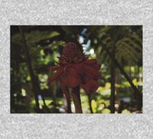 Glossy Jewel in the Jungle - Red Torch Ginger Lily Kids Clothes