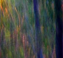 Abstract Faeries in the Forest Sticker