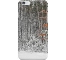 The Beech Tree in Snow iPhone Case/Skin