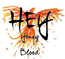 "Phoenix- Fall Out Boy ""Hey Young Blood"" Design  by PlatypusDoodles"