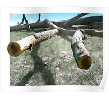 Fallen Tree Landscape Poster