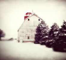 Red Silo by BarnArtandMore