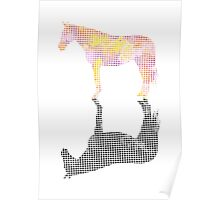 Abstract Horse Reflection Poster