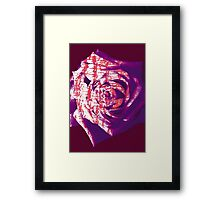Abstract Rose Framed Print