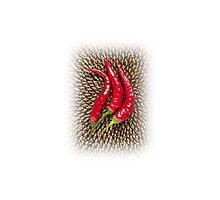 Chili & sunflower Photographic Print