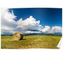mountain peak in a summer day Poster