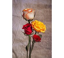 Floral Print With Roses Photographic Print