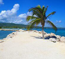 Runaway Bay, Jamaica by JVanessar