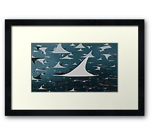Manta Profile Framed Print