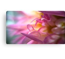 Petals Of Pink Canvas Print