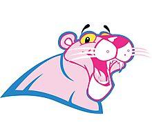 Carolina Pink Panthers Photographic Print