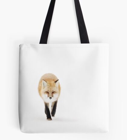 Fox on the move - Algonquin Park Tote Bag