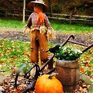 Scarecrow and Pumpkin by Susan Savad