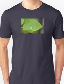 Rain Drop on Leaf T-Shirt