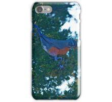 Turdus Migratorius - American Robin | Northwest Harbor, New York iPhone Case/Skin