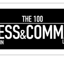 Princess & Commander - The 100 Sticker