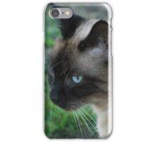TOP CAT iPhone Case/Skin