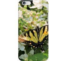 Tiger Swallowtail iPhone Case/Skin