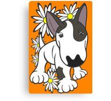 English Bull Terrier Pup Daisies  Canvas Print