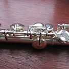 Little Mirrors - Close-up of Flute Keys by BlueMoonRose